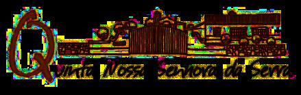 QNSS Logo transp